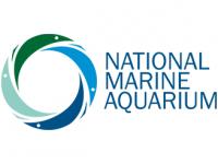 plymouth_aquarium