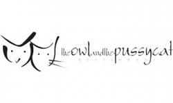 pussycat-owl